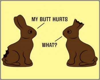 Chocolate Bunny Says What?